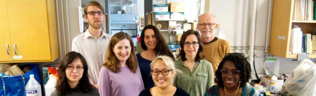 Taylor Lab Group Picture